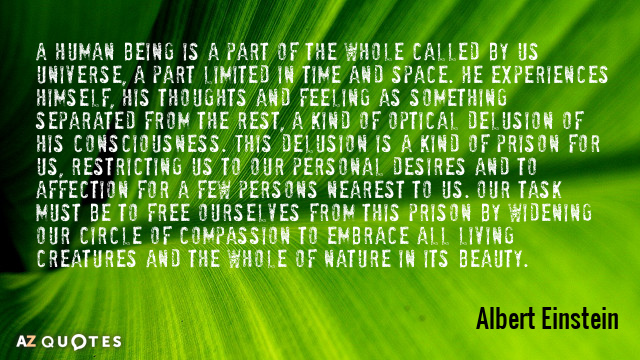 Albert Einstein quote: A human being is a part of the whole called by us universe...