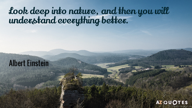Albert Einstein quote: Look deep into nature, and then you will understand everything better.