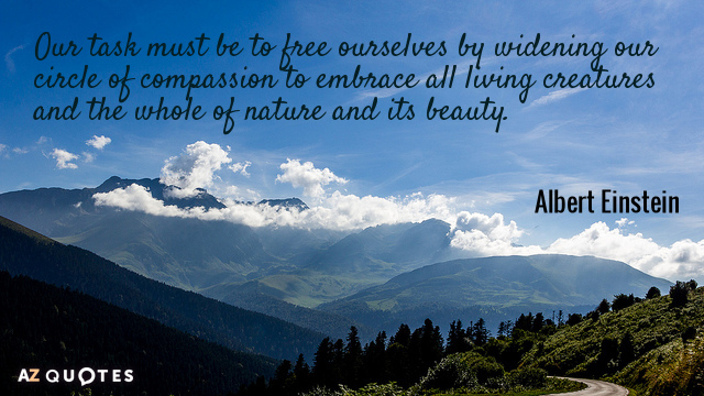 Albert Einstein quote: Our task must be to free ourselves by widening our circle of compassion...