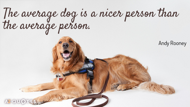 Andy Rooney quote: The average dog is a nicer person than the average person.