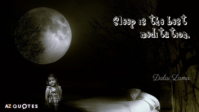 Dalai Lama quote: Sleep is the best meditation.