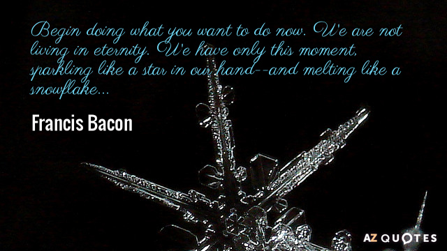 Francis Bacon quote: Begin doing what you want to do now. We are not living in...