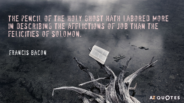 Francis Bacon quote: The pencil of the Holy Ghost hath labored more in describing the afflictions...