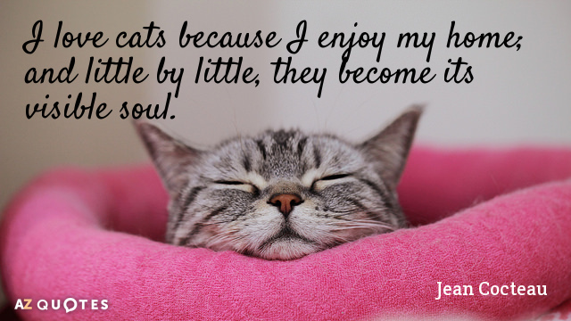 Jean Cocteau quote: I love cats because I enjoy my home; and little by little, they...