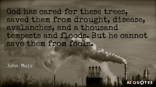 John Muir quote: God has cared for these trees, saved them from drought, disease, avalanches, and...