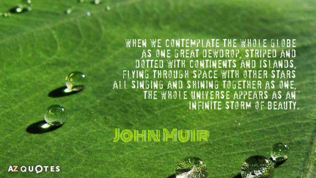 John Muir quote: When we contemplate the whole globe as one great dewdrop, striped and dotted...