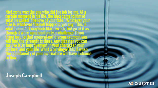 Joseph Campbell quote: Nietzsche was the one who did the job for me. At a certain...