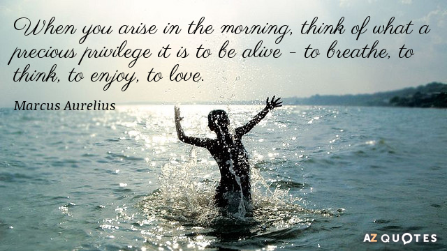 Marcus Aurelius quote: When you arise in the morning, think of what a precious privilege it...
