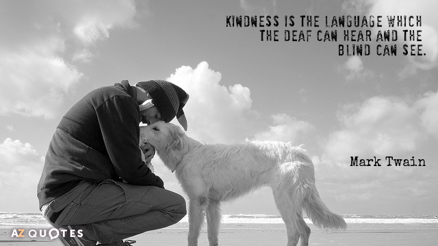 Mark Twain quote: Kindness is the language which the deaf can hear and the blind can...