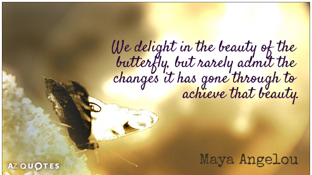 Maya Angelou quote: We delight in the beauty of the butterfly, but rarely admit the changes...