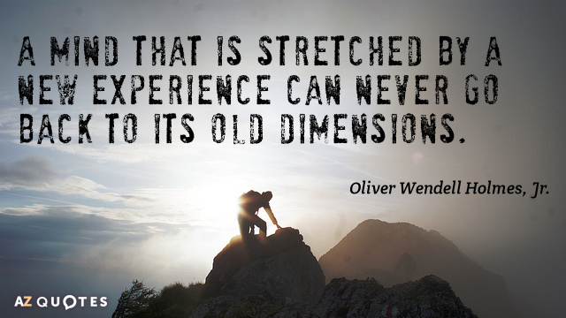 Oliver Wendell Holmes, Jr. quote: A mind that is stretched by a new experience can never...