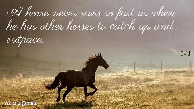 Ovid quote: A horse never runs so fast as when he has other horses to catch...