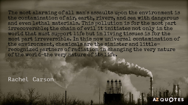 Rachel Carson quote: The most alarming of all man's assaults upon the environment is the contamination...