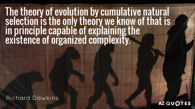 Richard Dawkins quote: The theory of evolution by cumulative natural selection is the only theory we...