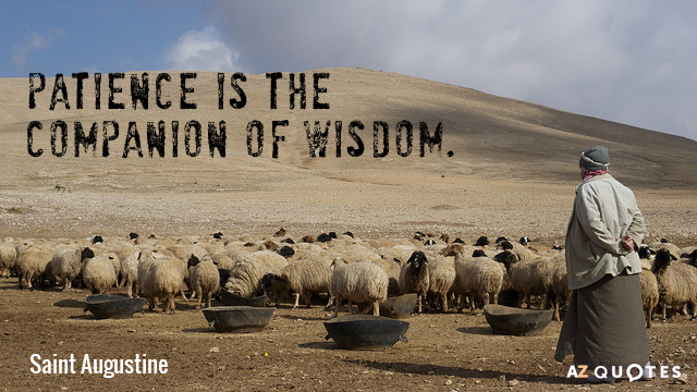 Saint Augustine quote: Patience is the companion of wisdom.