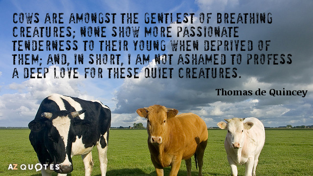 Thomas de Quincey quote: Cows are amongst the gentlest of breathing creatures; none show more passionate...