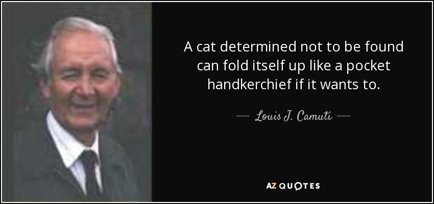 A cat determined not to be found can fold itself up like a pocket handkerchief if it wants to. - Louis J. Camuti