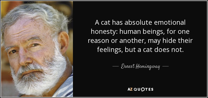 A cat has absolute emotional honesty: human beings, for one reason or another, may hide their feelings, but a cat does not. - Ernest Hemingway