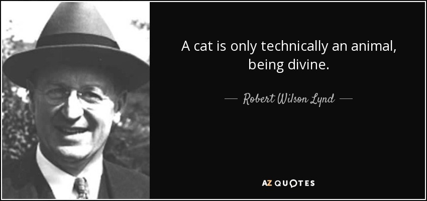 A cat is only technically an animal, being divine. - Robert Wilson Lynd