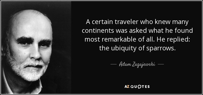 A certain traveler who knew many continents was asked what he found most remarkable of all. He replied: the ubiquity of sparrows. - Adam Zagajewski