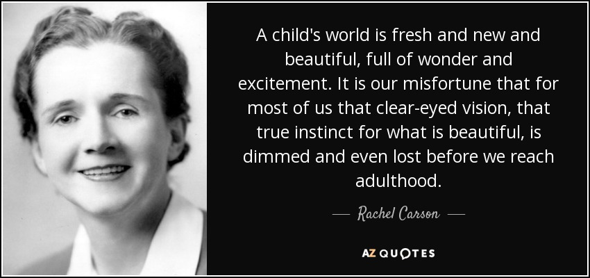 A child's world is fresh and new and beautiful, full of wonder and excitement. It is our misfortune that for most of us that clear-eyed vision, that true instinct for what is beautiful, is dimmed and even lost before we reach adulthood. - Rachel Carson