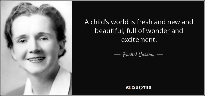 A child's world is fresh and new and beautiful, full of wonder and excitement. - Rachel Carson