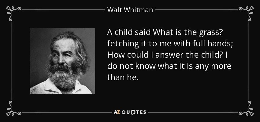 A child said What is the grass? fetching it to me with full hands; How could I answer the child? I do not know what it is any more than he. - Walt Whitman