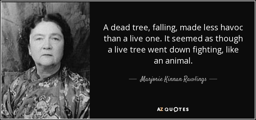 A dead tree, falling, made less havoc than a live one. It seemed as though a live tree went down fighting, like an animal. - Marjorie Kinnan Rawlings