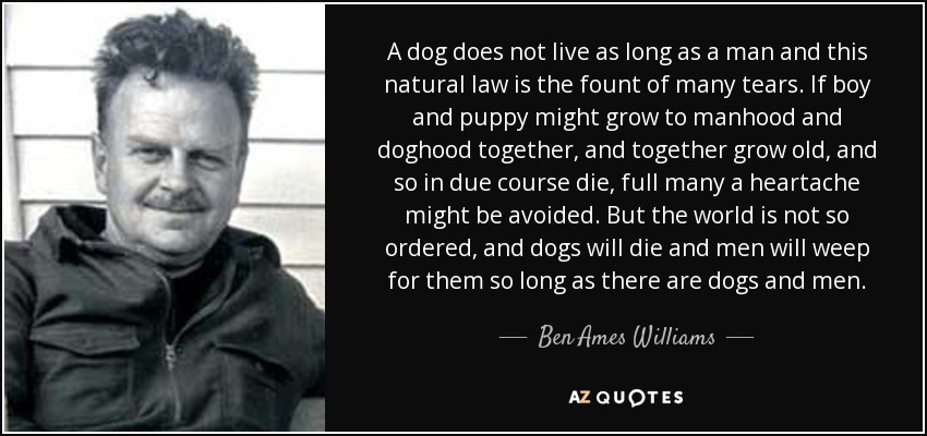Ben Ames Williams quote: A dog does not live as long as a man