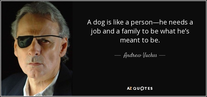 A dog is like a person—he needs a job and a family to be what he's meant to be. - Andrew Vachss