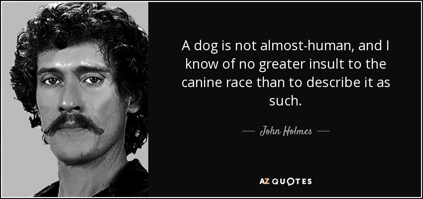 A dog is not almost-human, and I know of no greater insult to the canine race than to describe it as such. - John Holmes