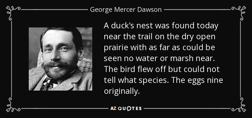 A duck's nest was found today near the trail on the dry open prairie with as far as could be seen no water or marsh near. The bird flew off but could not tell what species. The eggs nine originally. - George Mercer Dawson