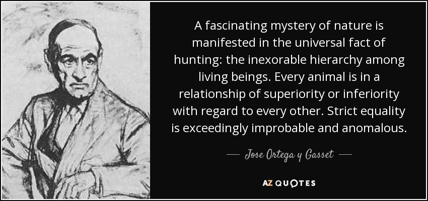 A fascinating mystery of nature is manifested in the universal fact of hunting: the inexorable hierarchy among living beings. Every animal is in a relationship of superiority or inferiority with regard to every other. Strict equality is exceedingly improbable and anomalous. - Jose Ortega y Gasset