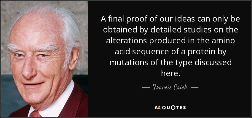A final proof of our ideas can only be obtained by detailed studies on the alterations produced in the amino acid sequence of a protein by mutations of the type discussed here. - Francis Crick
