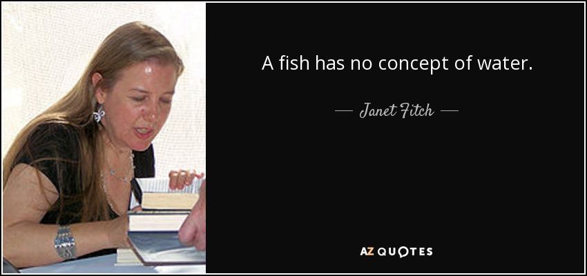 A fish has no concept of water. - Janet Fitch