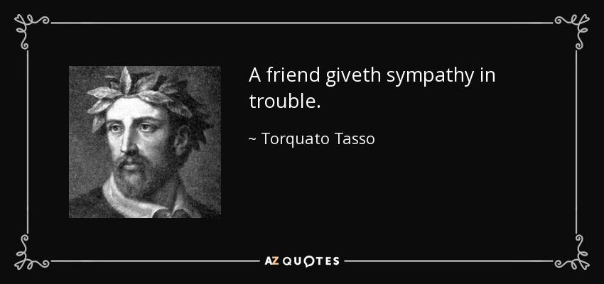 A friend giveth sympathy in trouble. - Torquato Tasso