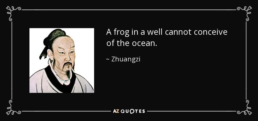 A frog in a well cannot conceive of the ocean. - Zhuangzi