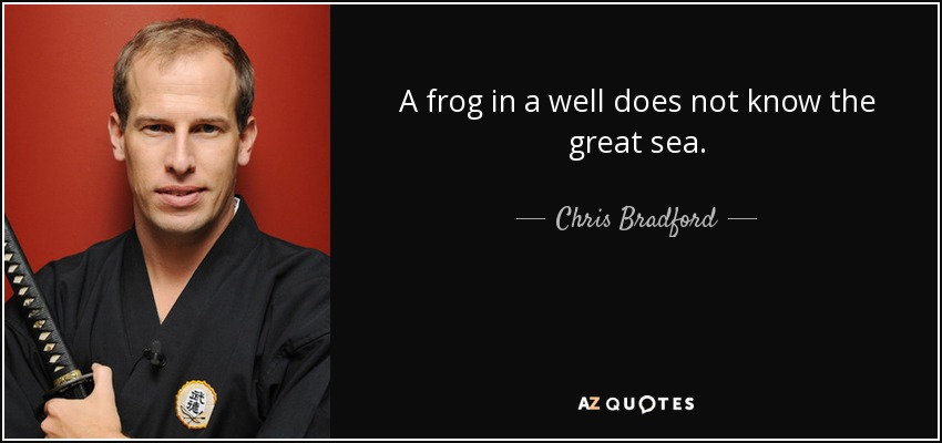 A frog in a well does not know the great sea. - Chris Bradford