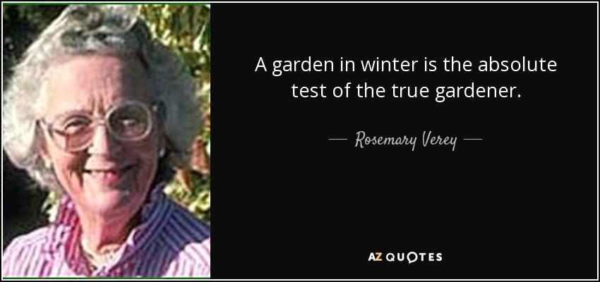 A garden in winter is the absolute test of the true gardener. - Rosemary Verey