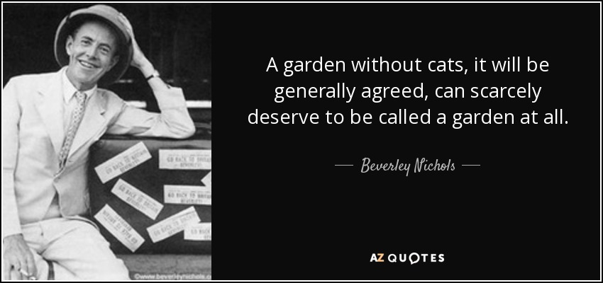 A garden without cats, it will be generally agreed, can scarcely deserve to be called a garden at all. - Beverley Nichols