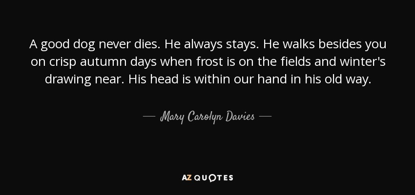 A good dog never dies. He always stays. He walks besides you on crisp autumn days when frost is on the fields and winter's drawing near. His head is within our hand in his old way. - Mary Carolyn Davies