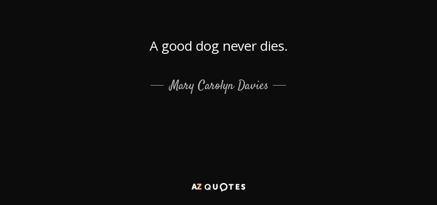 Mary Carolyn Davies quote: A good dog never dies.