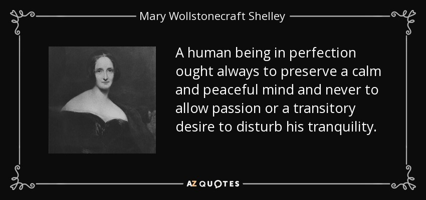 A human being in perfection ought always to preserve a calm and peaceful mind and never to allow passion or a transitory desire to disturb his tranquility. - Mary Wollstonecraft Shelley