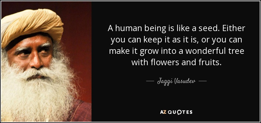 A human being is like a seed. Either you can keep it as it is, or you can make it grow into a wonderful tree with flowers and fruits. - Jaggi Vasudev