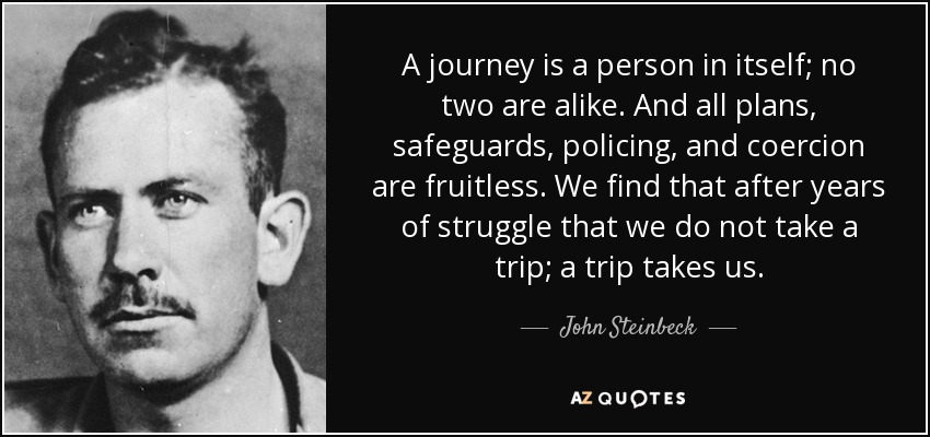 A journey is a person in itself; no two are alike. And all plans, safeguards, policing, and coercion are fruitless. We find that after years of struggle that we do not take a trip; a trip takes us. - John Steinbeck