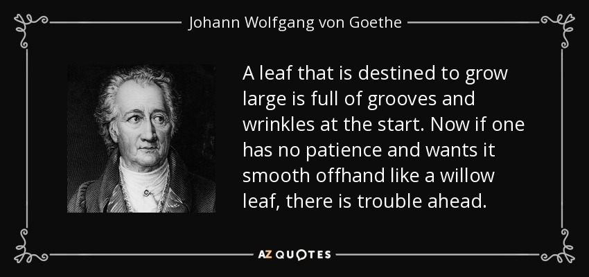 A leaf that is destined to grow large is full of grooves and wrinkles at the start. Now if one has no patience and wants it smooth offhand like a willow leaf, there is trouble ahead. - Johann Wolfgang von Goethe