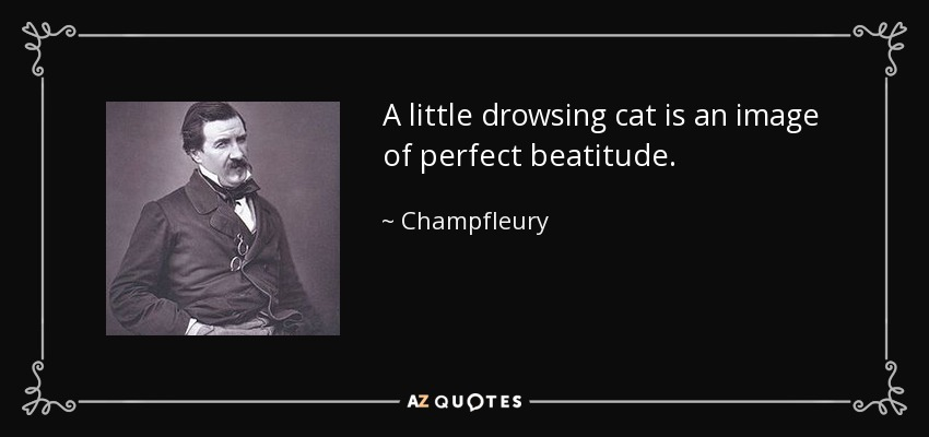 A little drowsing cat is an image of perfect beatitude. - Champfleury