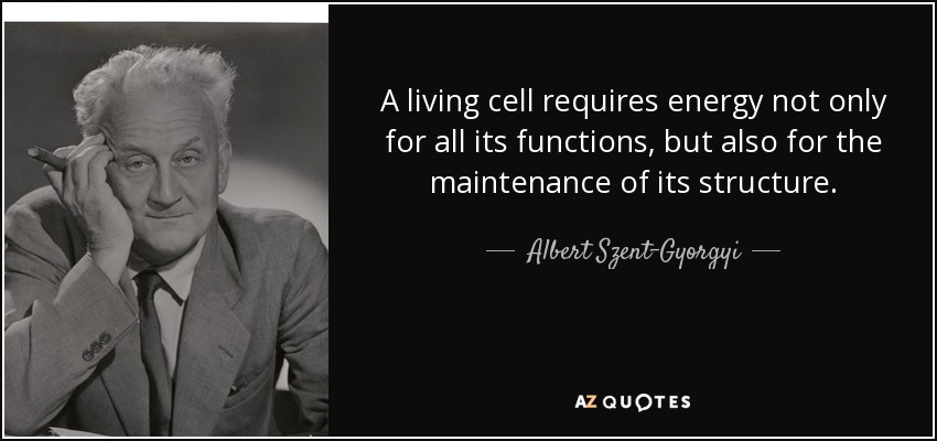 A living cell requires energy not only for all its functions, but also for the maintenance of its structure. - Albert Szent-Gyorgyi