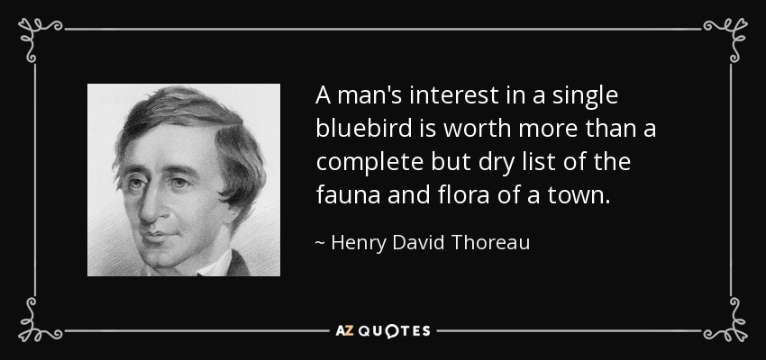 A man's interest in a single bluebird is worth more than a complete but dry list of the fauna and flora of a town. - Henry David Thoreau