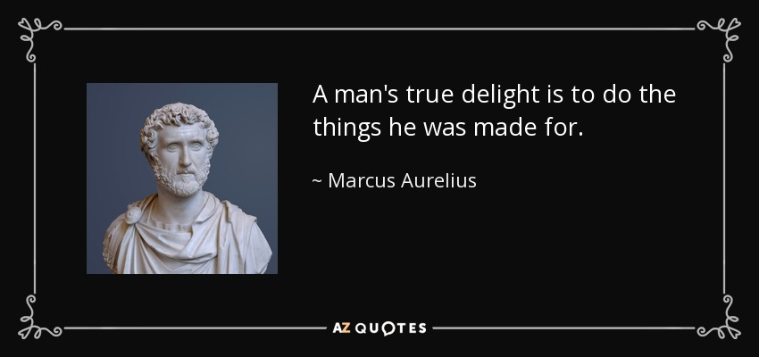 A man's true delight is to do the things he was made for. - Marcus Aurelius